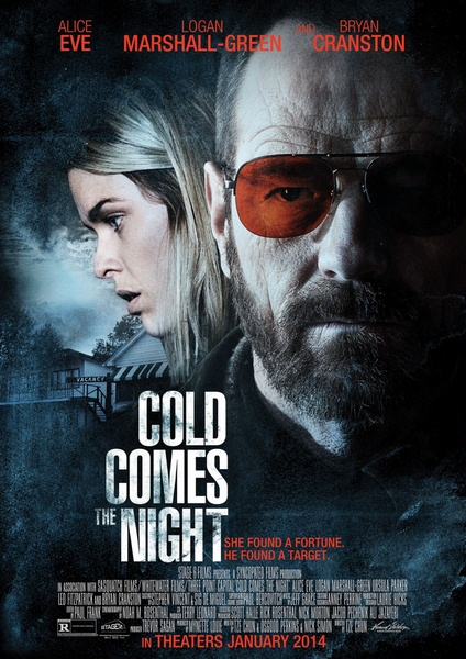 Взгляд зимы / Cold Comes the Night (2013) онлайн